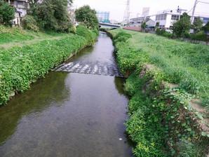 narimasu_10.jpg