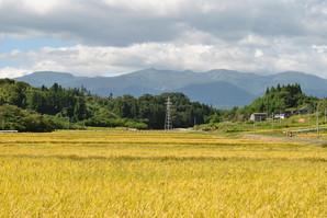 nihonmatsu_46.jpg