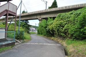 nihonmatsu_59.jpg
