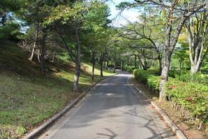 nihonmatsu_72.jpg