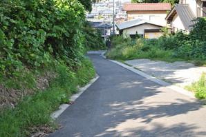 nihonmatsu_74.jpg