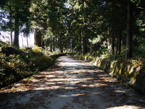 nikkoh_21.jpg