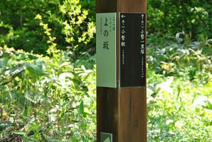 okunakayama_14.jpg