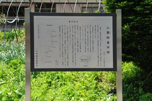okunakayama_18.jpg