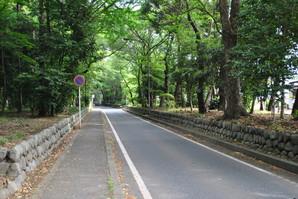 samukawa_06.jpg