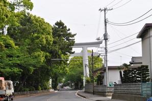 samukawa_07.jpg