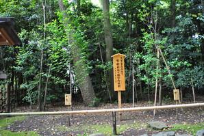 samukawa_09.jpg