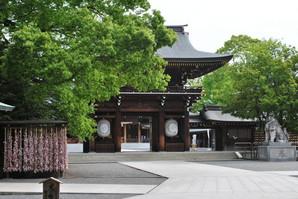 samukawa_10.jpg