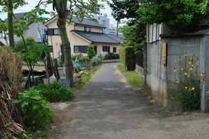 samukawa_26.jpg