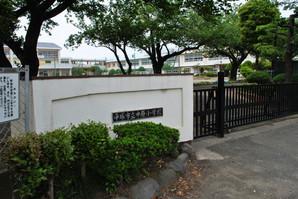 samukawa_33.jpg
