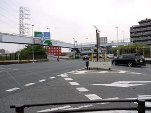 shingashi_08.jpg