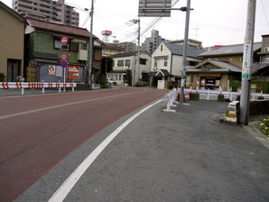 shingashi_11.jpg