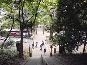 shingashi_15.jpg