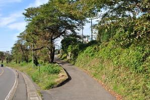 shiroishi_01.jpg