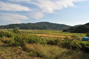shiroishi_16.jpg
