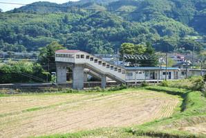 shiroishi_21.jpg