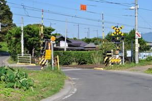 shiroishi_41.jpg