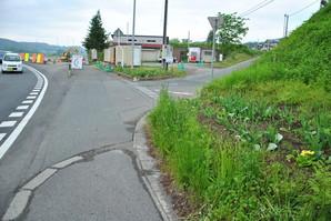 sibutami_05.jpg