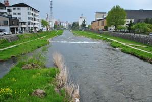 siwa_78.jpg