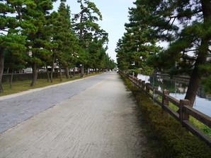 soka_16.jpg