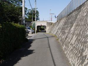 sugito_25.jpg