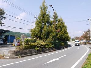 utsunomiya_15.jpg