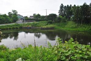 yoshioka_11.jpg