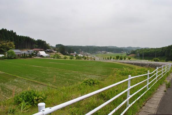yoshioka_31.jpg