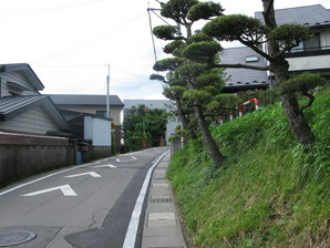 aoyagi_36.jpg