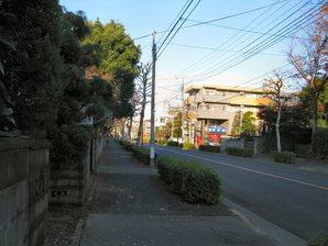 bubai_03.jpg