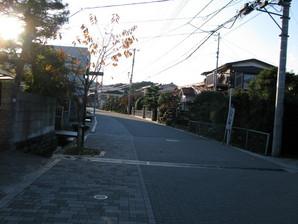 bubai_49.jpg