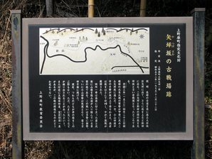 fujino_36a.jpg