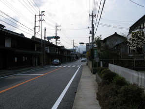 fujino_45.jpg