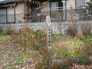 kobotoke_45b.jpg
