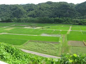 kyoraishi_04.jpg