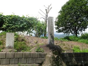 kyoraishi_05.jpg