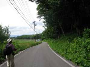 kyoraishi_46.jpg