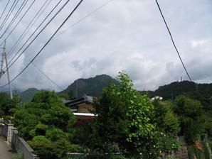 saruhashi_02.jpg