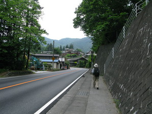 saruhashi_19.jpg