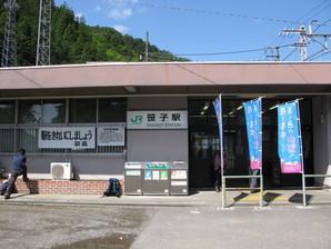 sasago_01.jpg