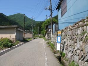 sasago_08.jpg