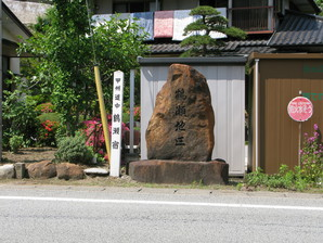 sasago_29.jpg