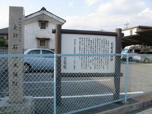 sasago_52.jpg