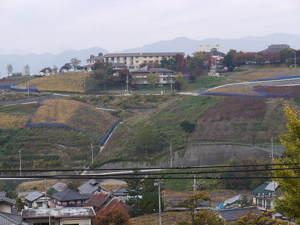 kainokuni_070.jpg