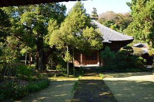 kamegaya_02.jpg