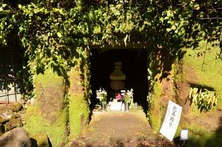 kamegaya_04.jpg