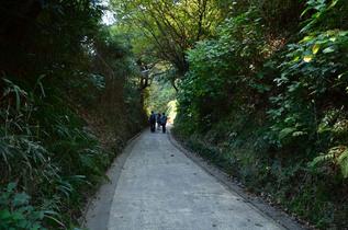 kamegaya_09.jpg