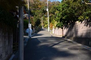 kamegaya_11.jpg