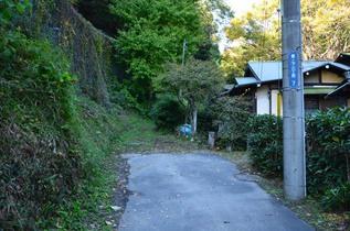 kamegaya_16.jpg