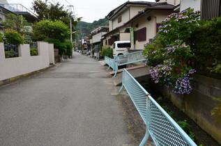 nagoshi_05.jpg